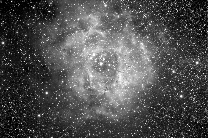 Rosette Nebula in Black and White | Amateur CCD Astronomy